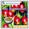 vitamin C-rich Red date powder/ red jujube Extract/Jujube P.E 10:1