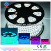 China good quality CE&RoHS ultra bright led strip led dip strip