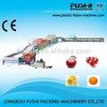 frutas cítricas de lavagem e enceramento máquina de classificação