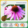 Hot sale Chinese herb extracts best price 4% choric acid organic echinacea purpurea extract