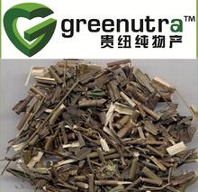 Chinese Thorowax extract/ Chinese Thorowax powder