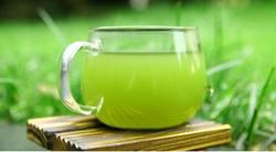 Matcha green tea extract, food material matcha green tea gift packaging, matcha ice cream best quality good tea