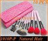 10pcs fashionable makeup cosmetic brush set (1010P-P)