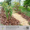 garden style decorating bark mulch