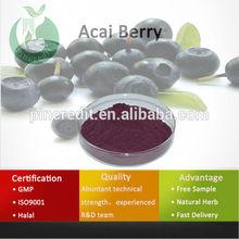 Acai Berry Powder/Acai Berry Brazil Export/Acai Berry
