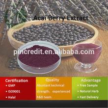 Acai Berry /Acai Berry Brazil Export/Acai Berry Extract