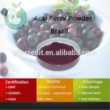 Acai Berry /Acai Berry Extract/Acai Berry Powder Brazil