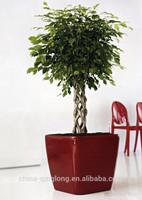 Light weight red clay flower pots