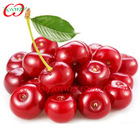 2014 new crop Canned cherry fresh fruit in syrup manufacturer