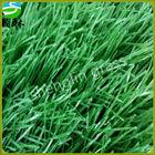 home turf /landscaping/garden/ DIY artificial grass