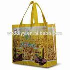PP LAMIANTED NON WOVEN BAG/FABRIC SHOPPING BAG/CUSTOM DESIGN ECO BAG