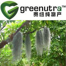 Lichen Usnea Extract/usnea extract
