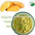 Gmp alta qualidade africano mango pó do extrato/africano mango seed extrato pó/manga folha de extrato de pó