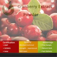Cranberry Juice Powder Extract/Organic Cranberry Powder/Cranberry Extract Powder