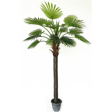 2.85m hot sale factory direct popular scale palm tree