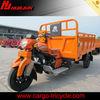 three wheel motor bike/three wheel gas scooters/3 wheel trike