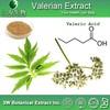 3W Factory sale - Valerian Extract , Valerian acids /Valerian straight powder