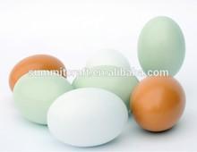 Designed DIY wooden paint artificial egg