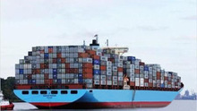container shipping agent in Foshan to worldwide with professional operator and best rate