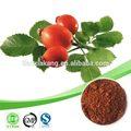 A vitamina c fórmula molecular/glutationa vitamina c/pura da vitamina c