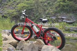 Fat bike 2014 newest model CE/EN15194 specialized cruiser bike ebike