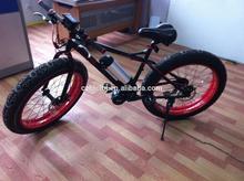 Fat bike 2014 newest model adult central motor green power ebike, hot sale