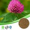 100% natural red clover extract /red clover extract powder isoflavone / pure natural red clover extract