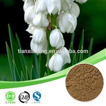 tribulus saponins /total saponins / ivy saponins
