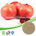 pomegranate peel extract powder /pomegranate peel extract(ellagic acid) / high quality pomegranate peel extract