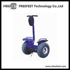 China FreeFeet cool sport balance motorcycle manufacturer