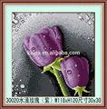 Stieg kunst berühmten rose malerei/diy lila wasser rose malerei