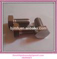 Titanium industrial parafuso sextavado M12