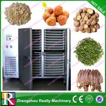 China Newest Drying Fruit Oven/Dry Fruit Machinery
