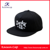 100% Wool/acrylic Snapback Cap And Hat Custom High Quality 3D Embroidery Logo Design Front The Flat Brim Cap/Hats