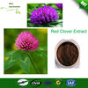 2014 Free Samples HPLC Pure Red Clover Extract