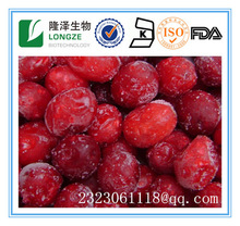 Antioxidant cranberries in bulk with low price