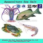 Pet product blue treasure marine sea salt live frozen shrimp
