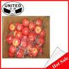 Artificial decorative plastic fruit
