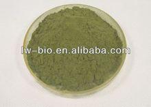 Echinacea Extract, Echinacea Purpurea herb powder, 2%-10% chicoric acid