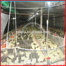 çiftlik otomatik tavuk yemleme sistemi