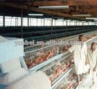 9WCD-3120 A-type Hot Galvanized Layer Cage for Chicken Farm Machine