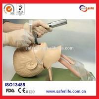 2014 Comprehensive emergency skills trainning KAR1A child trachea intubation model