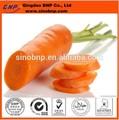 Bnp vende la alta calidad de jugo de zanahoria en polvo extracto beta- caroteno
