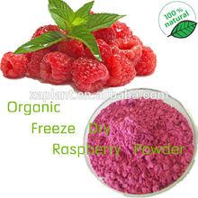 GMP100% Pure Freeze Dried Raspberry Powder/ Raspberry Juice/Raspberry Fruit Concentrate Powder