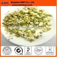 BNP Sells Jasmine Tea Extract Powder fujian jasmine tea