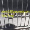 iron dog kennel