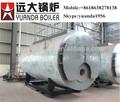 de tubo de fuego industrial de gas del calentador de agua