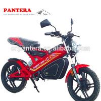 PT-E001 2014 New Design Popular Folding Easy Portable EEC Electric Mini Motorcycle 24V
