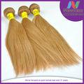 عينة مجانية غير المجهزة الجودة الماليزي الشعر الكثيف تاريخ تفتيح لون الشعر مسحوق