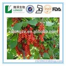 Natural Schisandra Berries P.E.